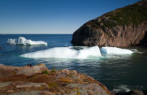 The iceberg that went Crack! - Quidi Vidi