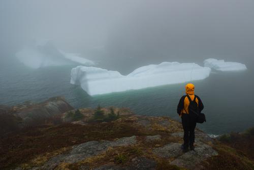 Icebergs in the fog - Quidi Vidi