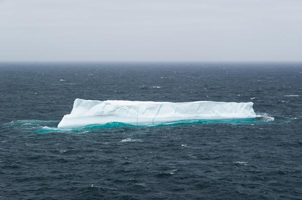 Small tabular iceberg - Stiles Cove Path