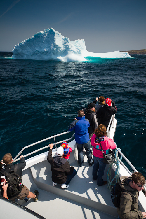 Iceberg watching - St. John's Bay, near Blackhead