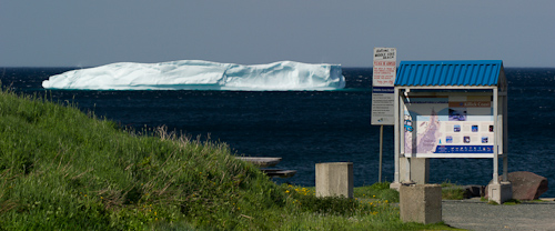Iceberg at the beach - Middle Cove