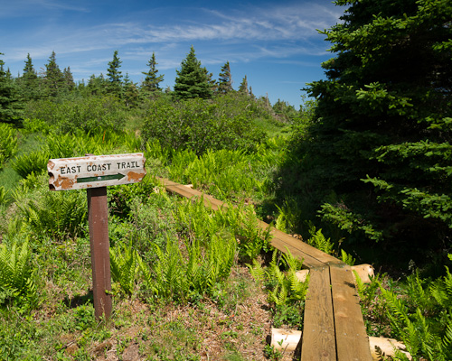 A summer's day on the East Coast Trail - Mickeleens Path