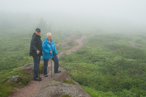 In the fog, on the trail - Cape Spear Path