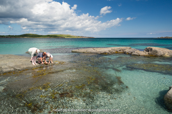 Team Booman discovers life - Sandy Cove, Fogo Island