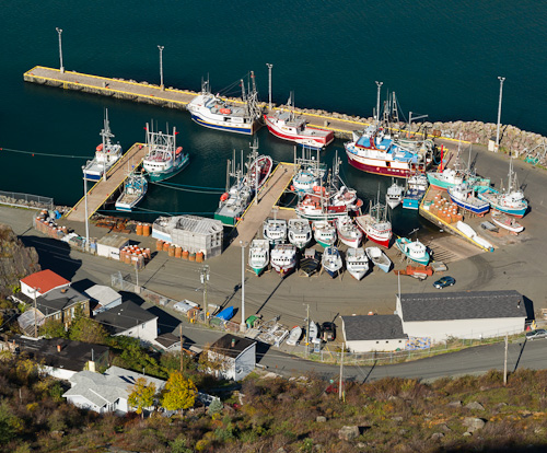South Side Harbour from above - St. John's