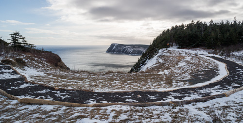 A new trailbed - Redcliff Head