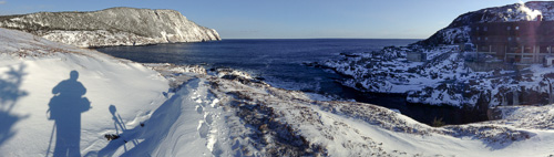 Winter scenery at the Ocean Sciences Centre - Logy Bay