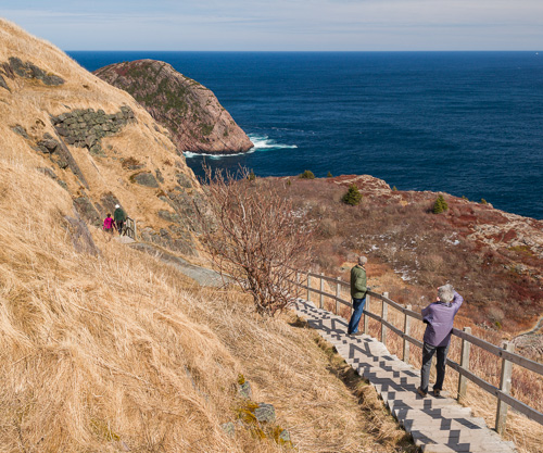 The long stairs - North Head Trail