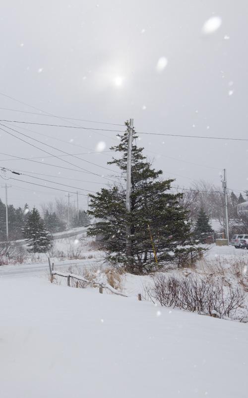 April snow - Torbay