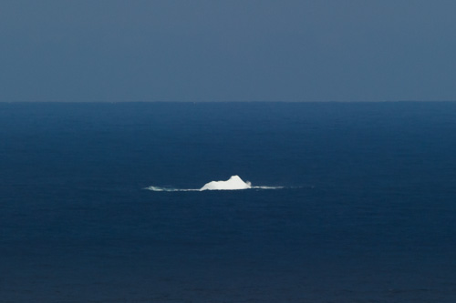 My first iceberg of 2013 - Flatrock