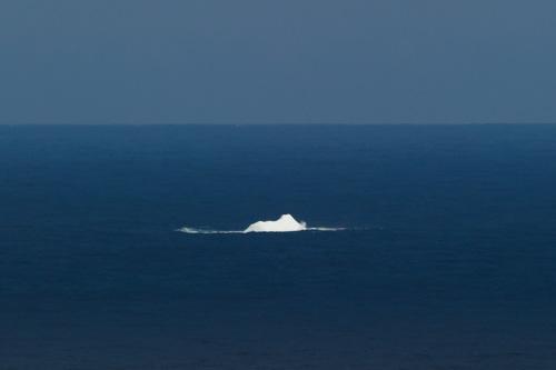 My first iceberg of 2013 - Flatrock