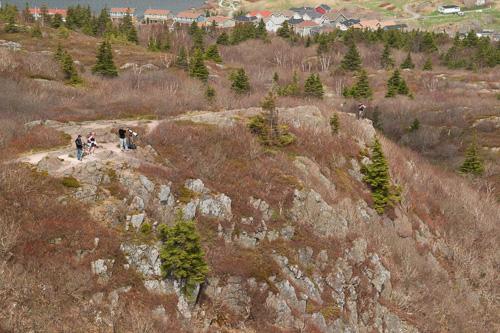 Viewpoint ridge - Cuckolds Cove Trail