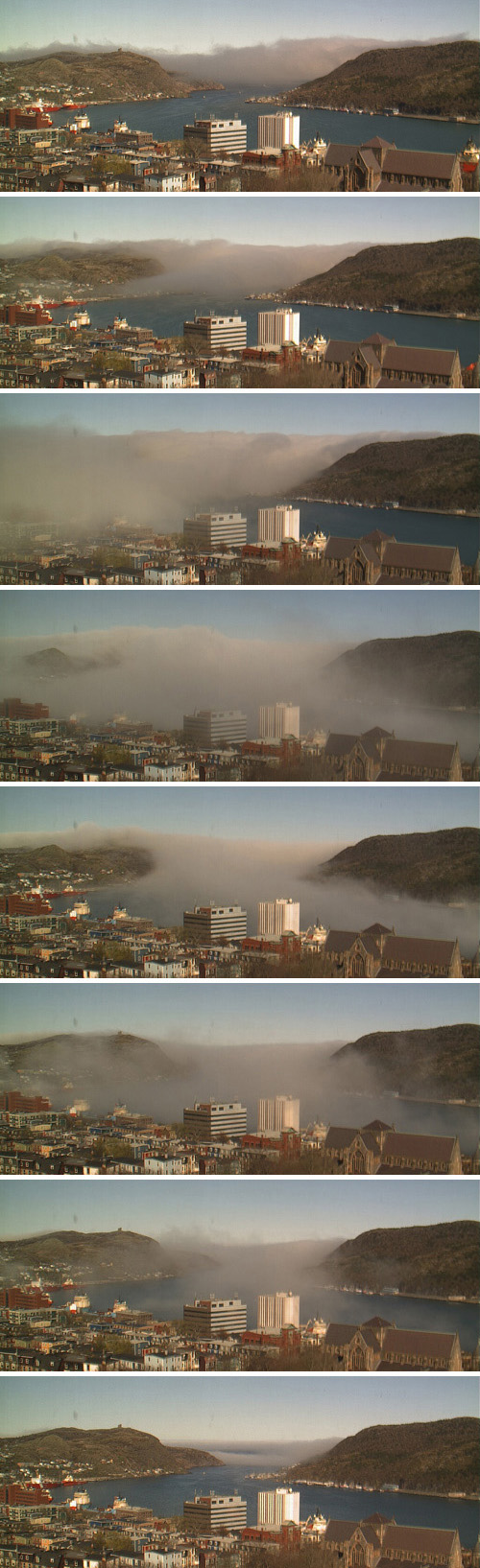 Fog collage - CBC's HarbourCam