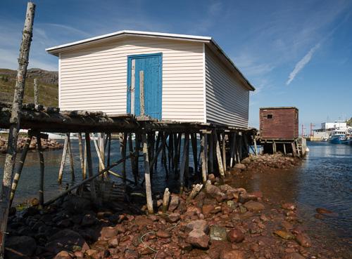Low tide - Petty Harbour