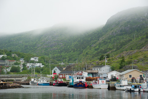 Fog on the hills - Petty Harbour