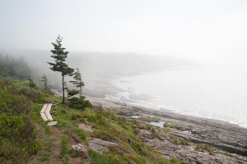 Fog on Useless Bay - Spout Path