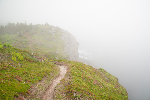 Fog at Dungeon Cove - Spout Path