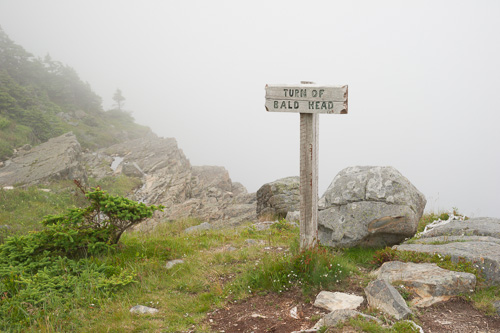 Foggy Turn of Bald Head - Spout Path