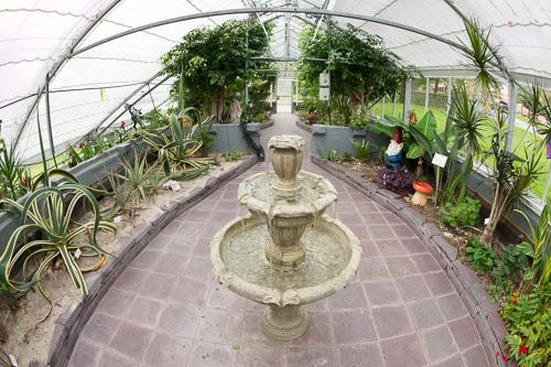 Greenhouse - Bowring Park, St. John's