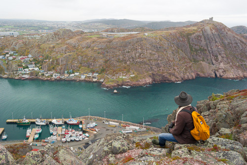 Taking in the view - St. John's