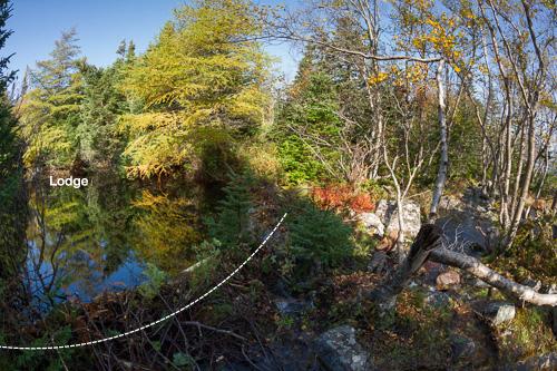 Beaver lodge, pond & dam - Miner Point Campsite, Motion Path