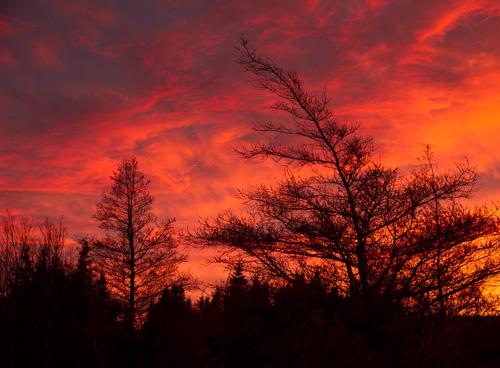 Sky on fire #2 - Torbay