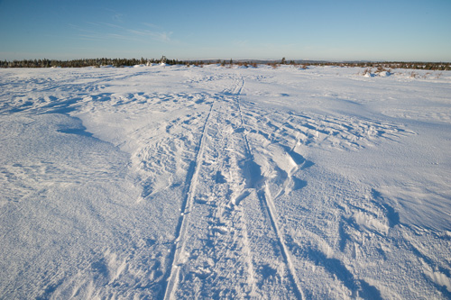 The open barrens, completely covered and frozen - Overland route to the Spout