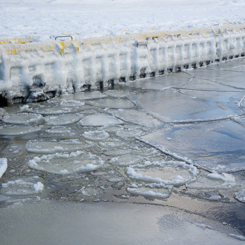 Ice in the harbour - St. Philip's