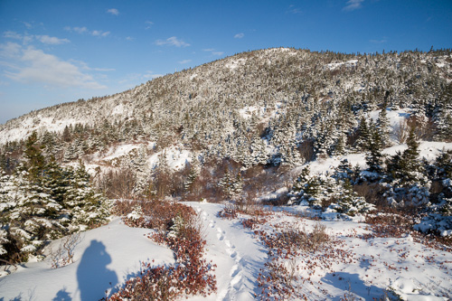 Blue sky over White Hills - Sugarloaf Path