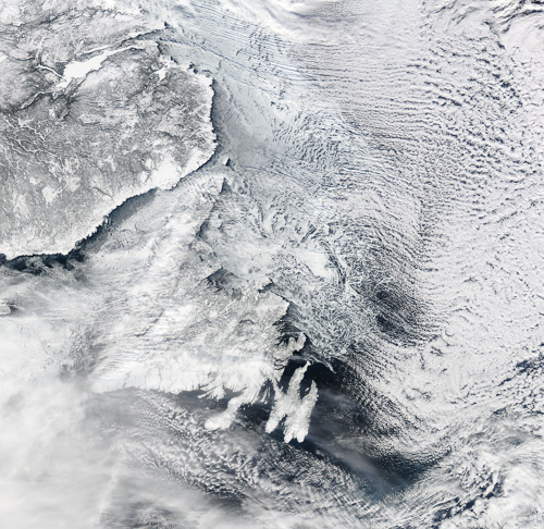 Yesterday's satellite image of Newfoundland – Image Credit: NASA/GSFC, Rapid Response