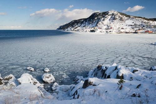 Fluid harbour ice - Portugal Cove