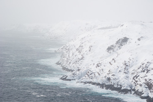 Looking south - Cape Spear