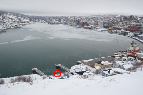 Eagle in a red circle - St. John's