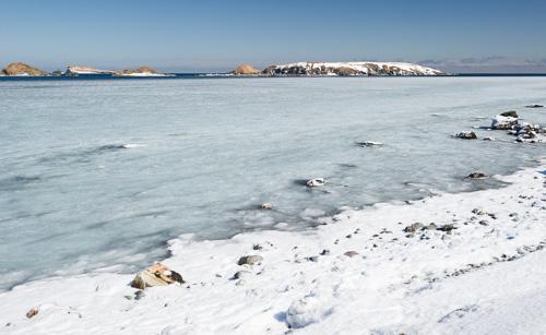 Slushy sea ice - Ferryland