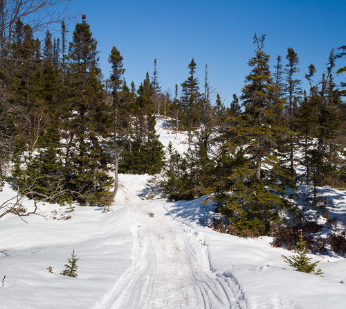 Snowmobile tracks - Overland route to Spout