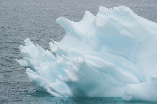 Sharp end of the iceberg - Bauline