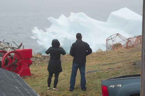 Iceberg watchers - Bauline