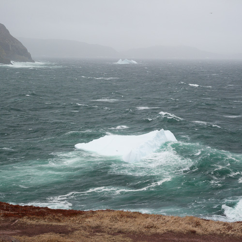 Two small icebergs - Cape Spear