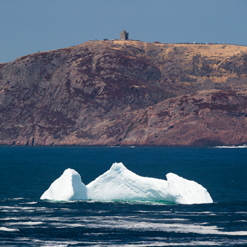 Iceberg, Signal Hill in the background - Cape Spear