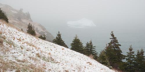 Snowy trail, foggy iceberg - Father Troy's Trail