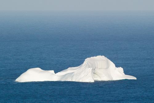Iceberg - seen from Signal Hill, St. John's