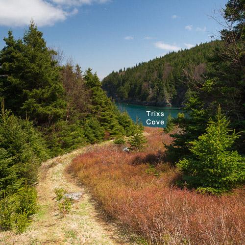 #7: Trixs Cove, Bear Cove Point Path