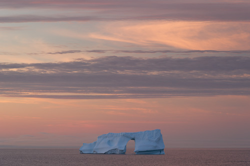 Iceberg sunset - Cape Spear