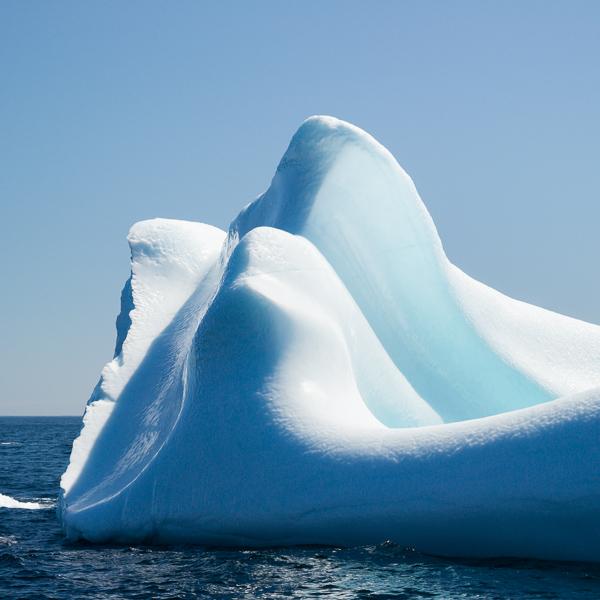 Iceberg - Brigus South