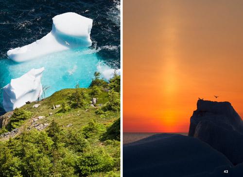 Iceberg-Season