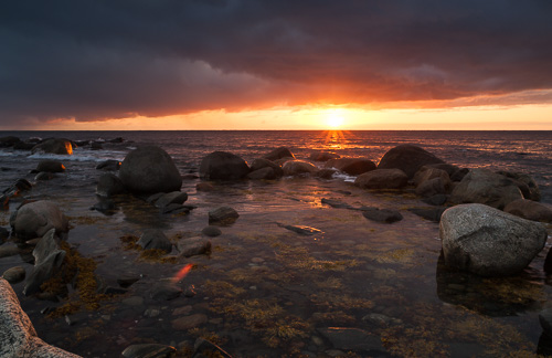 Sunset - Lobster Cove, Gros Morne NP