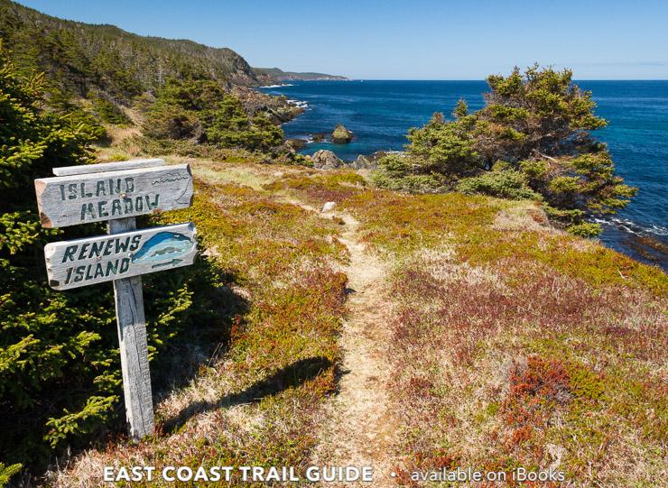 Island Meadow - Island Meadow Path