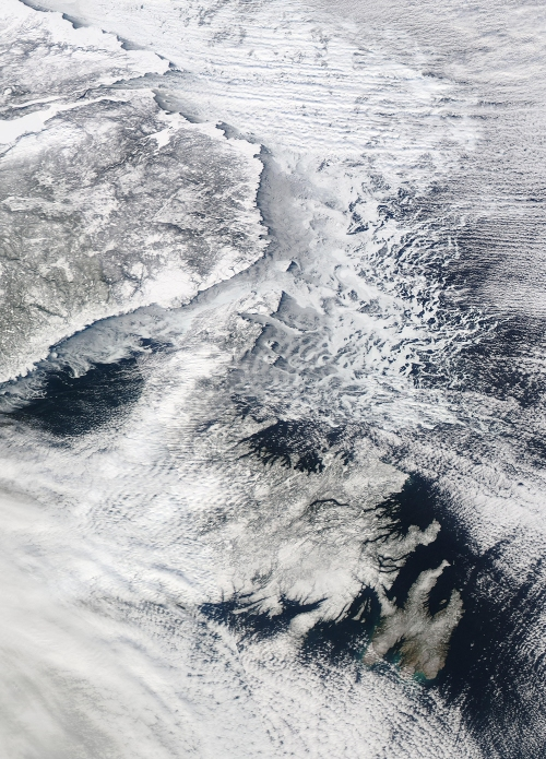 Newfoundland from space - NASA Worldview