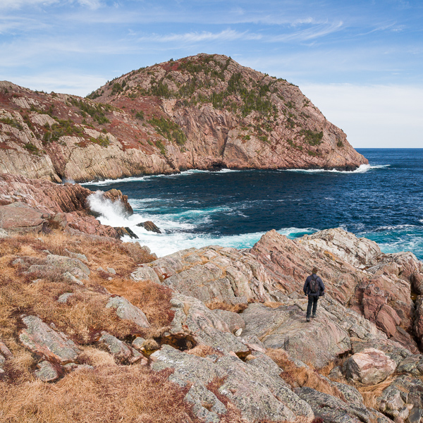 Exploring the cliffs of Colourful Cuckolds Cove - St. John's