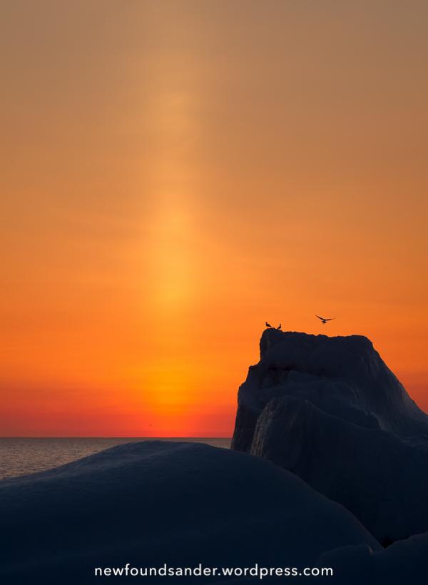 Daybreak - Quidi Vidi